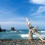 Tour du lịch nghỉ dưỡng biển Phan Thiết khách sạn 2 sao