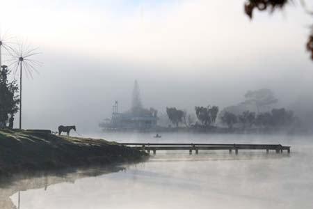 Hồ Xuân Hương trong sương mù