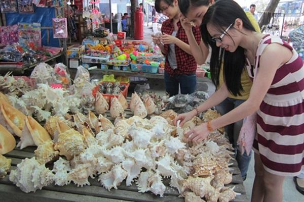 Quà lưu niệm làm từ vỏ sò được bày bán rất nhiều